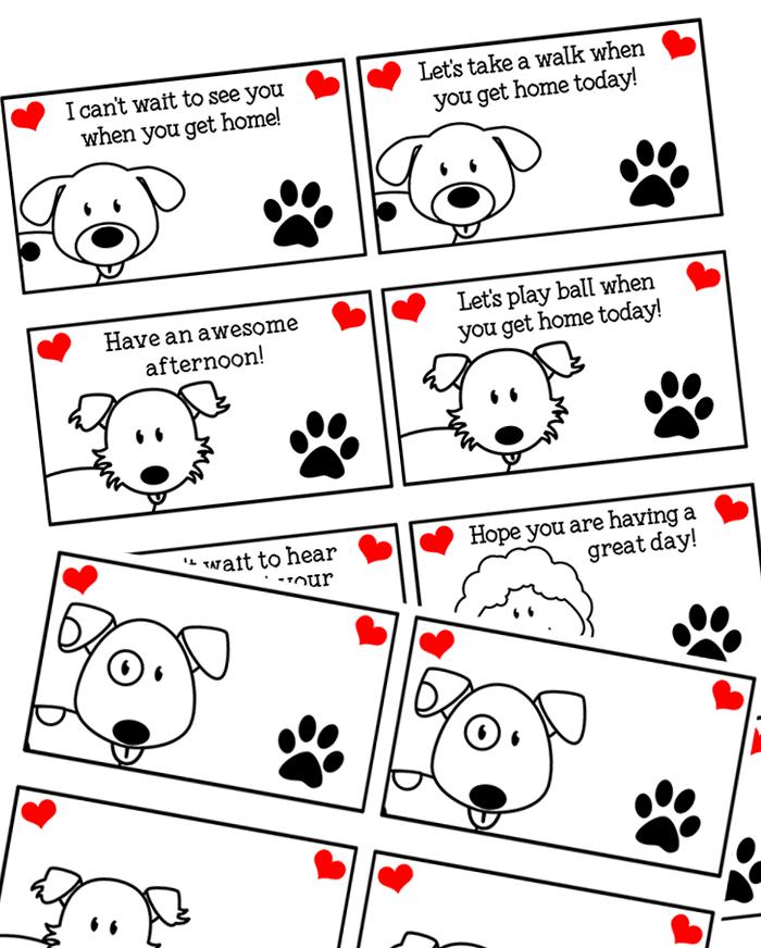 Summer Activities For Dog Loving Kids
